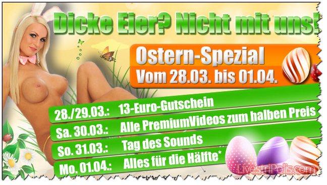 Livestrip Oster Spezial